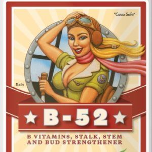 b52-1lt-advance-nutrients